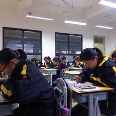 The Global Search for Education: Focus on China