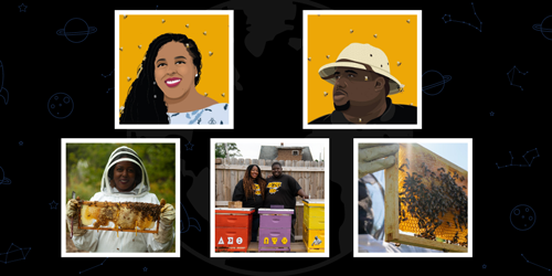 The Global Search for Education: Rebuilding Lives with Detroit Hives